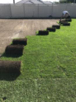 Garden Landscapers Lawn