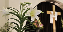 easter lily in sanctuary with cross.jpg