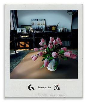 Polaroid-Nuts-06.jpg