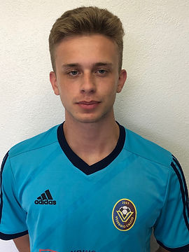 Mirko Milosavljevic.JPG