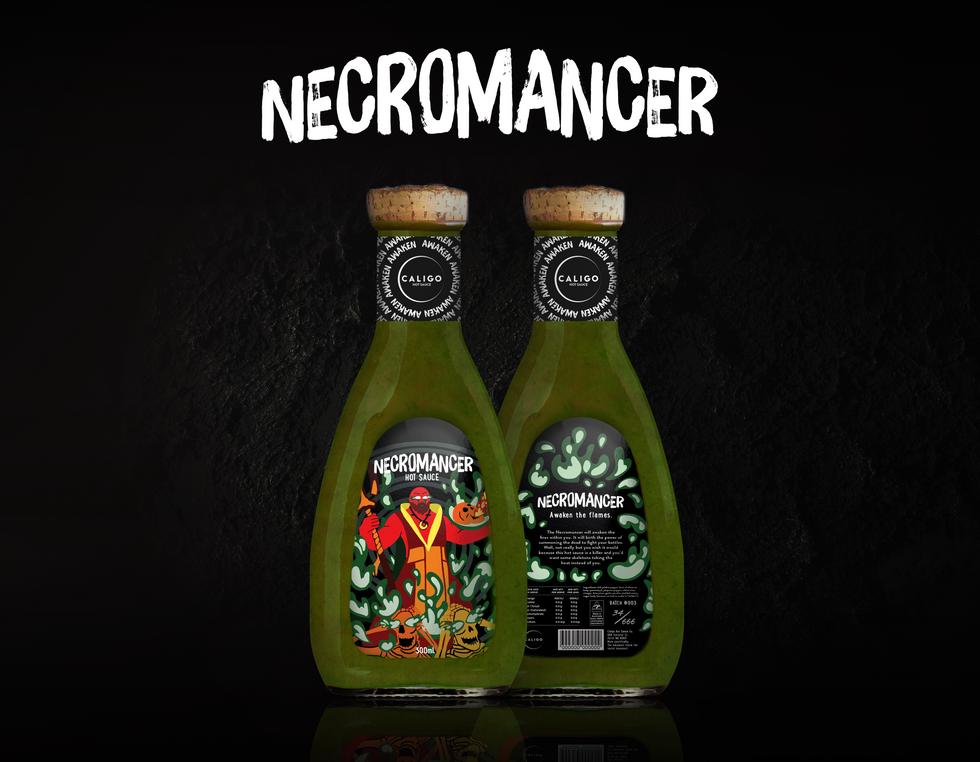 Necromancer_Mockup_HeroShot.png