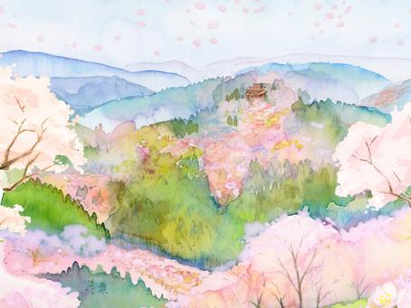 吉野山の桜の楽しみかた
