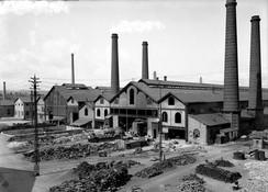 Steelplant of Terni, 1903