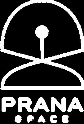 prana space logo copy.png