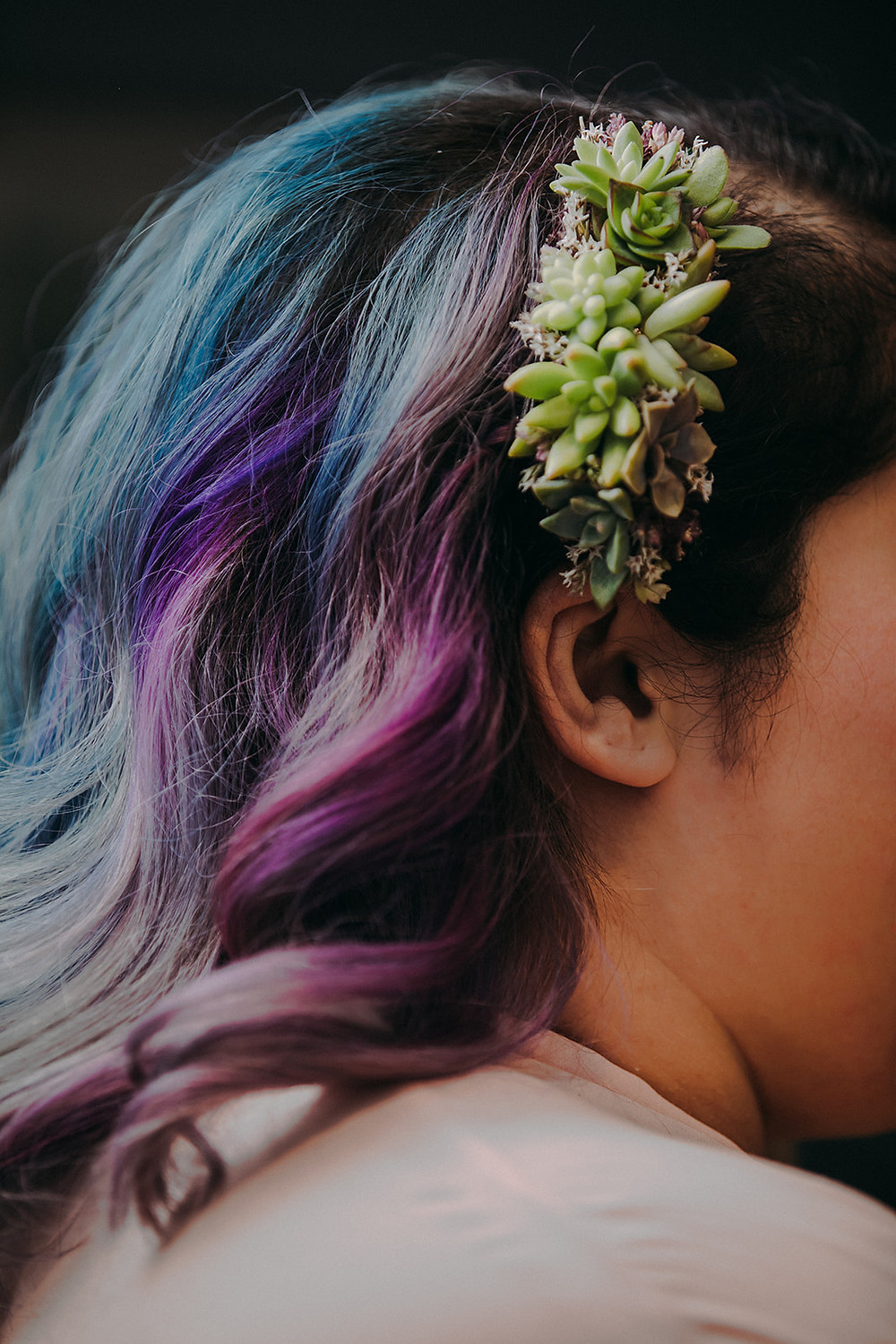 Succulent headpiece for Madison Wisconsin Fall  Wedding