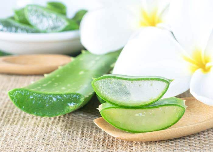 Aloe Vera for Soft Healthy Skin