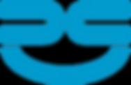 RAN Services Logo