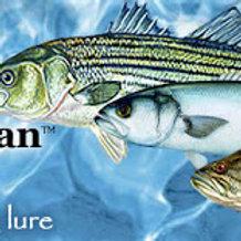 FISHIN MAGICIAN SKID STIK 5 INCH