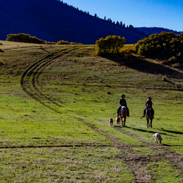 2012-10_Ride to Narnia_0226_sm.jpg
