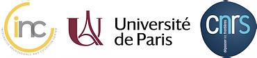 LogINCC_UP_CNRS.png