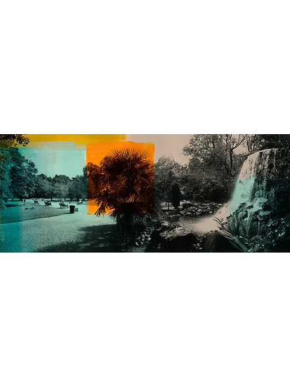 Iveagh Gardens - Limited Edition Print from €85