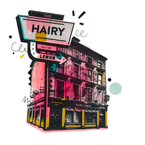 The Hairy Lemon - Limited Edition Print from €60