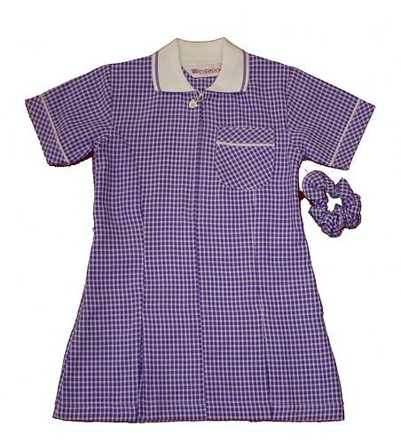 Summer Dress (purple)