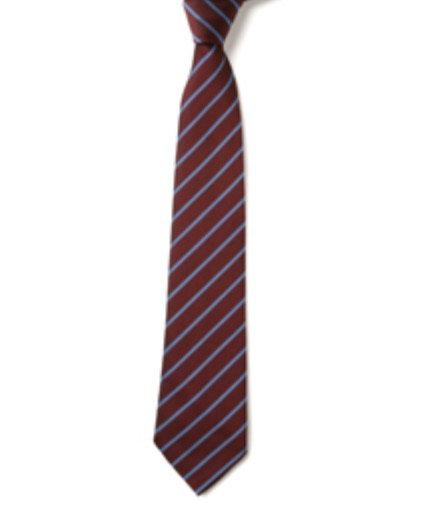 EBS School Tie