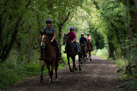 String heads out to the gallop-8.jpg