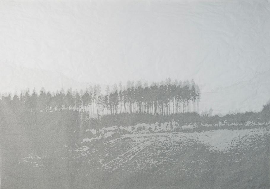 Intimate Landscape III