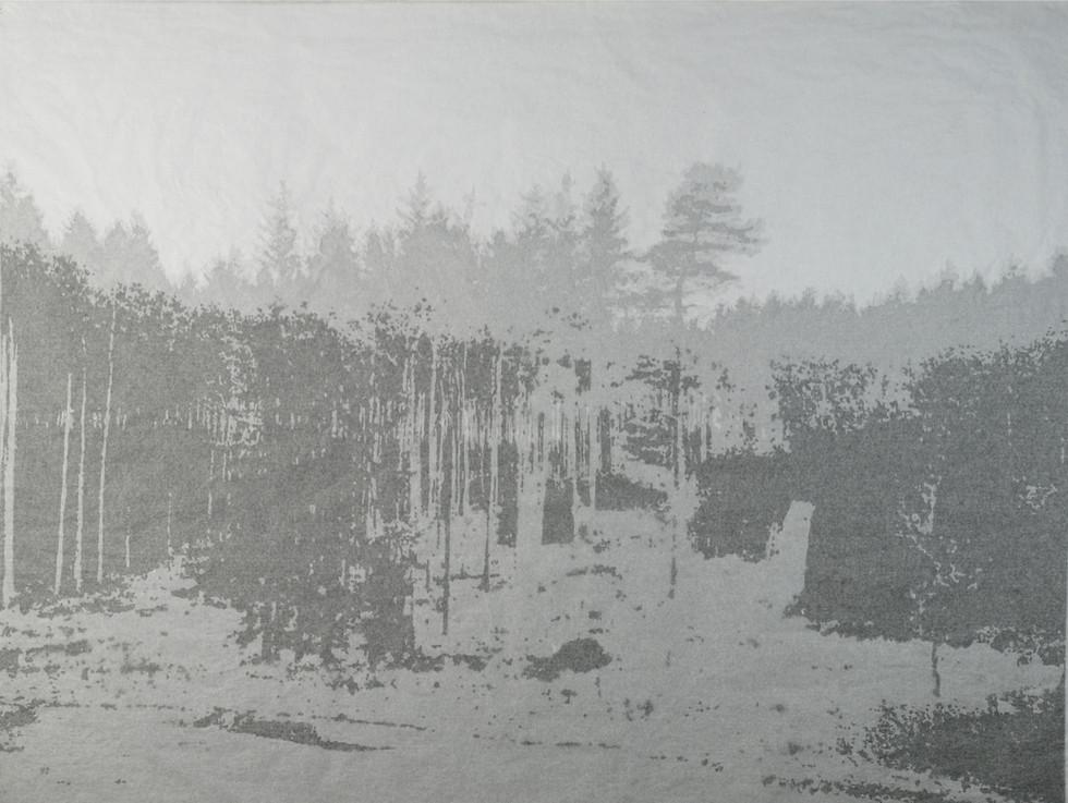 Intimate Landscape II
