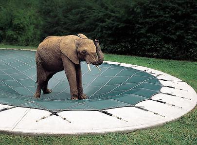loop loc safety pool cover