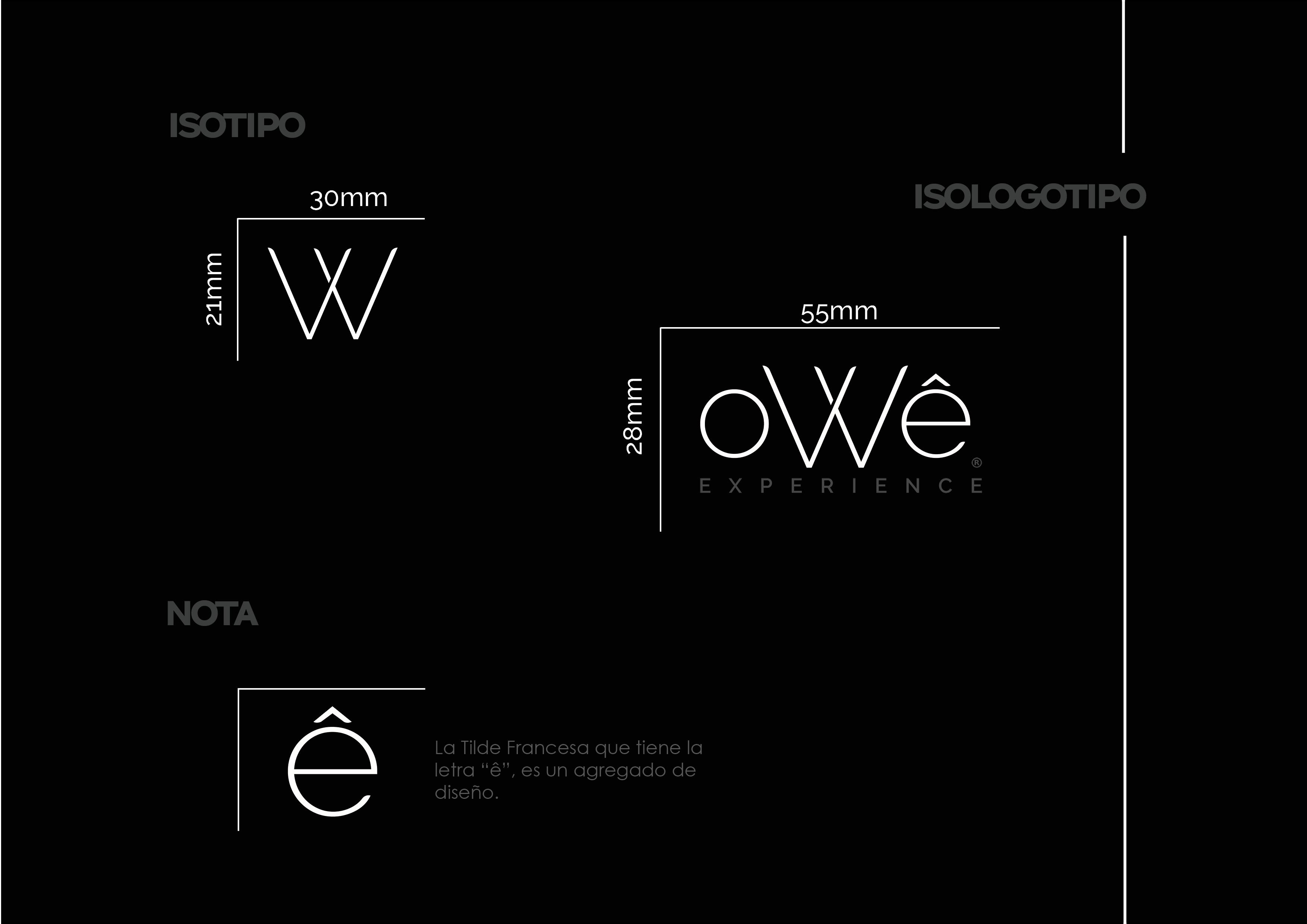 manual identidad de marca owe6