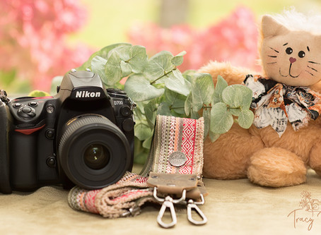 My Nikon D700 Camera