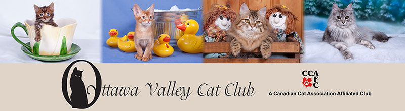 Ottawa Valley Cat Club
