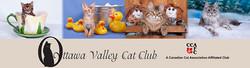 Ottawa Valley Cat Club