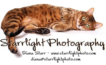 Starrlight Photography