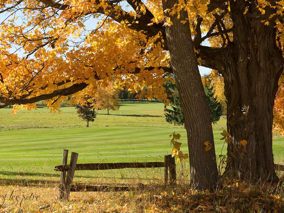 Calabogie Golf Course