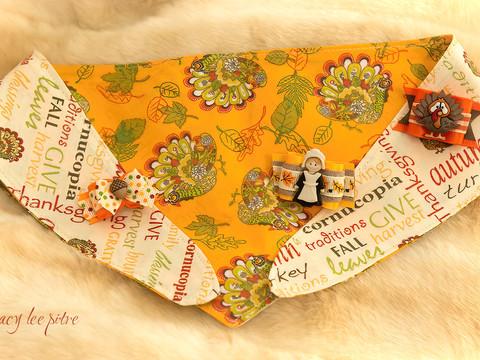 Thanksgiving bandana and bows