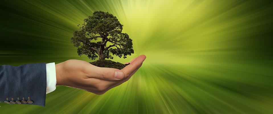 sustainability-3303398.jpg
