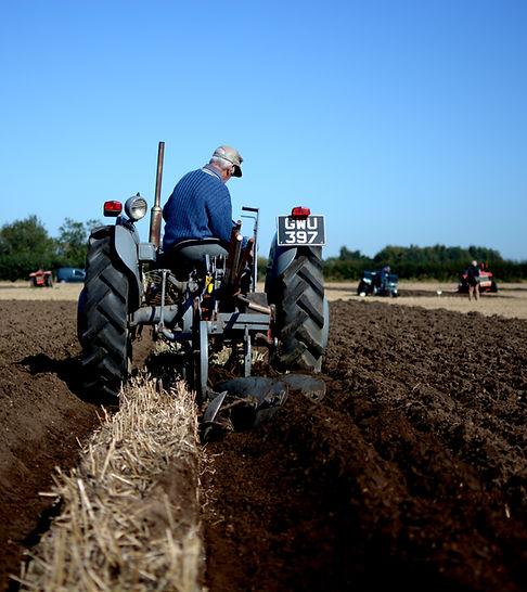 Ploughing Match 2.jpg