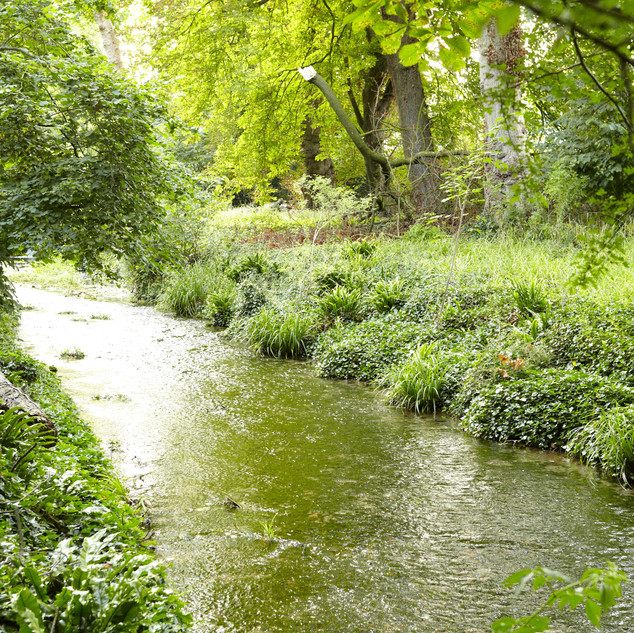 The River Wey runs through the grounds