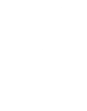 Louisa Spencer Wellness