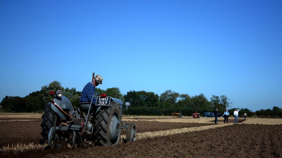 Ploughing Match 3.jpg