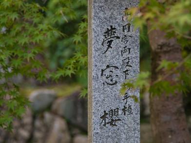 JAPAN (0028_.jpg