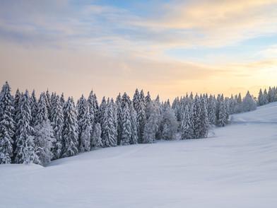 Raten Winter (0001_.jpg