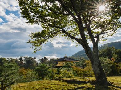 JAPAN (0042_.jpg
