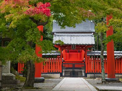 JAPAN (0027_.jpg