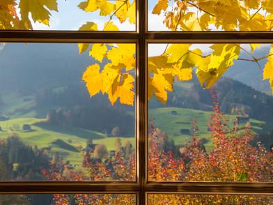 Herbsfenster (0001_.jpg