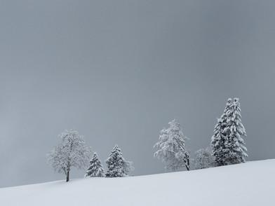 Raten Winter (0007_.jpg