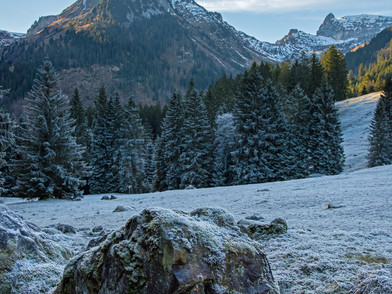 Obersee (0003_.jpg