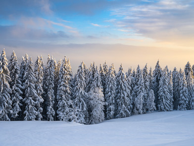 Raten Winter (0003_.jpg