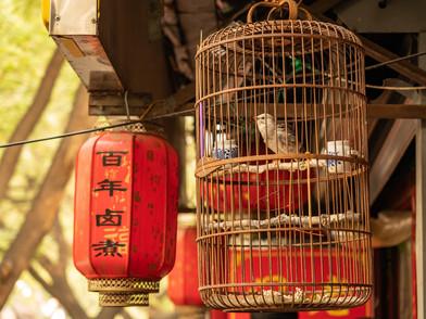 Peking (0001_.jpg