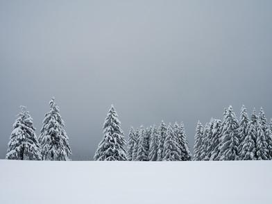 Raten Winter (0006_.jpg