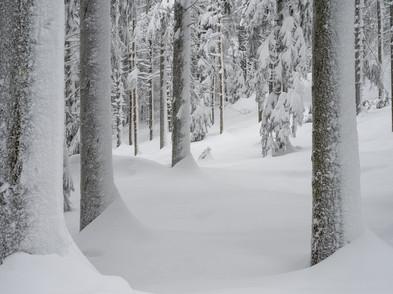Raten Winter (0005_.jpg