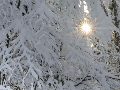 Raten Winter (0009_.jpg