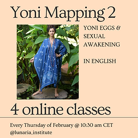 Copy of Yoni Mapping 2-4.png