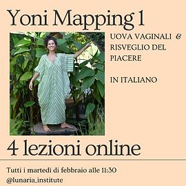 Yoni Mapping 1 -4.png