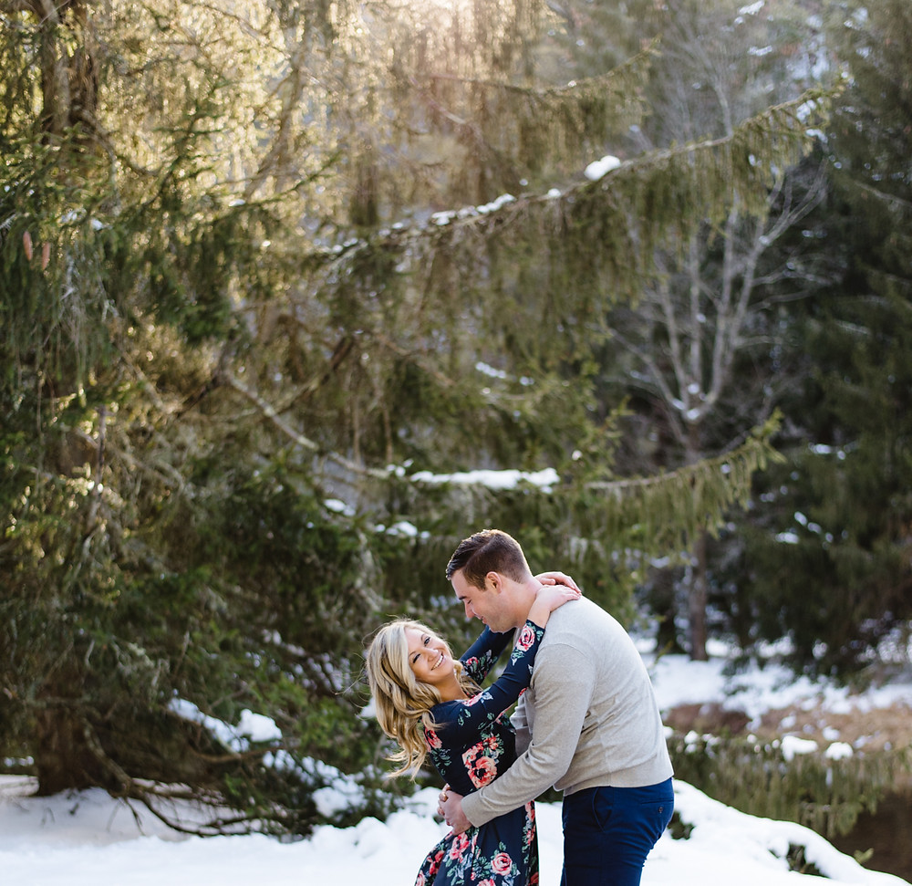 Hickory Run State Park Engagement Session