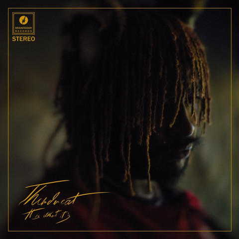 Thundercat's 'It Is What It Is' Album Review